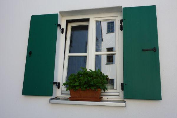holzfenster-und-laden-min8585B975-3EDF-A005-5FFC-184D8288F24E.jpg